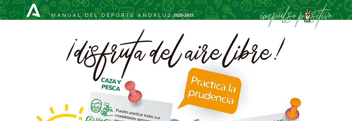 https://fapd.org/sites/default/files/2020-09/manual-deporte-andaluz.jpg