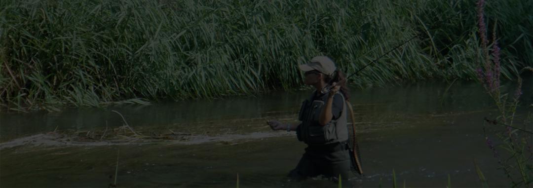 https://fapd.org/sites/default/files/revslider/image/slider%20Mujer-en-la-pesca-deportiva-1440x564_c.jpg